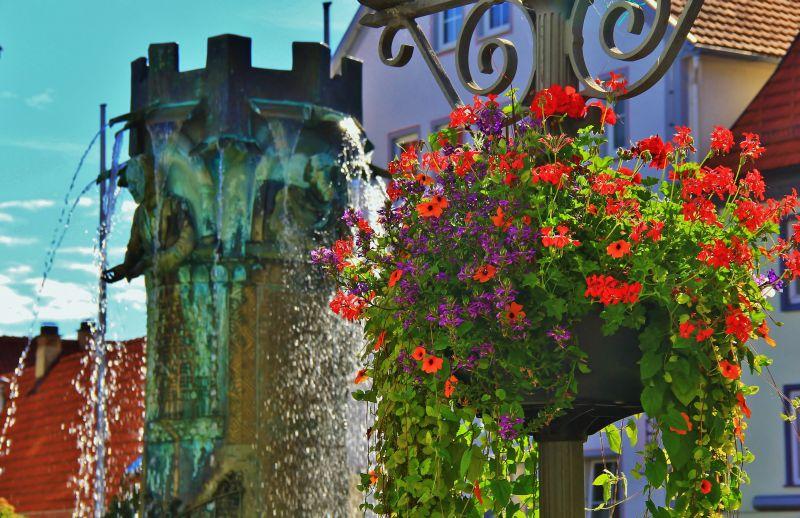 Rathausbrunnen mit Blumen