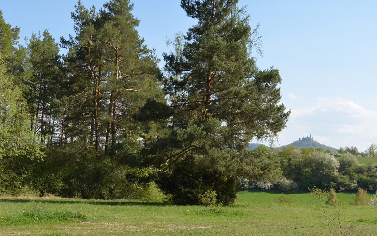 Standort des Naturkindergartens