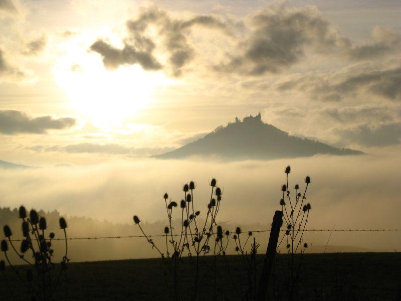 Burg Hohenzollern im Nebel