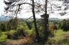 Naturschutzgebiet Beuren: Wachholderheide (Foto: Monika Selig)