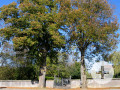 Friedhof Beuren