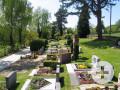 Friedhof Bechtoldsweiler